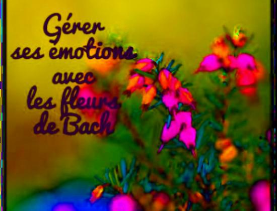Conseillère en Aromathérapie Traditionnelle et Fleurs de Bach.