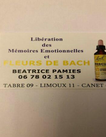Consultante en fleurs de Bach et mémoires émotionnelles du corps, Énergéticienne,Tabre 09