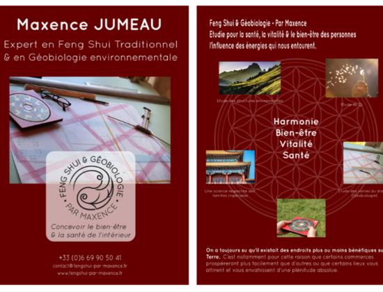 GEOBIOLOGUE – EXPERT FENG SHUI à Bourges