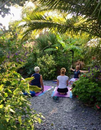 Professeur de Yoga – Soin énergétique – enseignant Reiki – Formateur énergétique – Lons 64