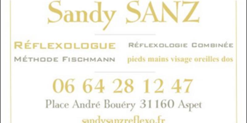 Réflexologue, Réflexologie Combinée (pieds, mains, visage, oreilles, dos) Méthode FISCHMANN – Toulouse