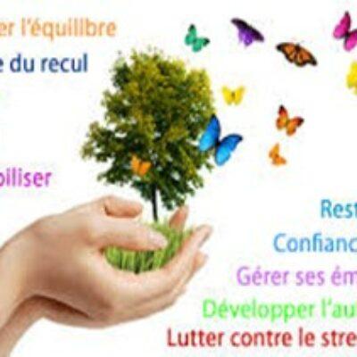 Sophrologue, Conseiller Fleurs de Bach et Thérapeute énergétique – Villers-lès-Nancy