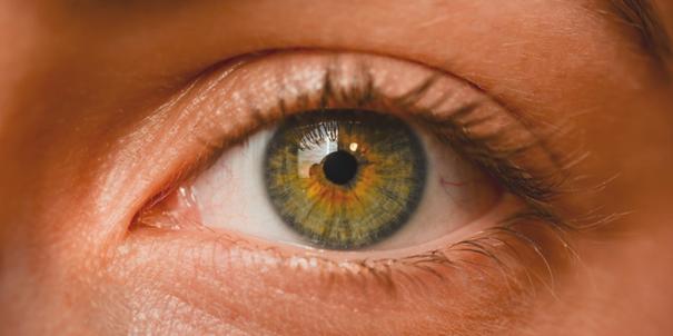 L'iris : indicateur parfait de l'état de santé d'un individu
